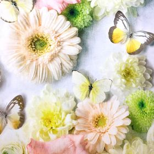 Gerbery a motýle dekoračná látka